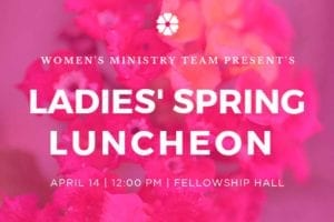 Ladies Spring Luncheon
